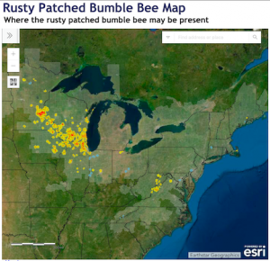 map of rusty patched bumble bee distribution